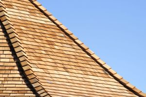 flat vs pitched roof